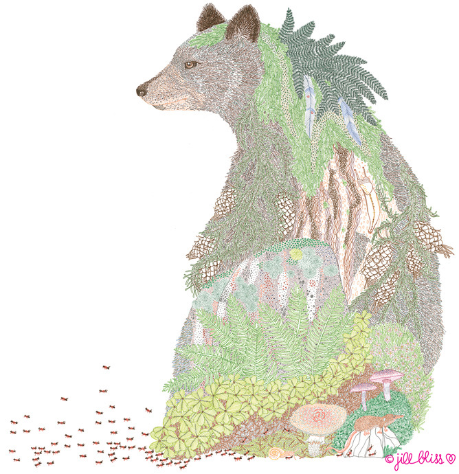 anima-bear